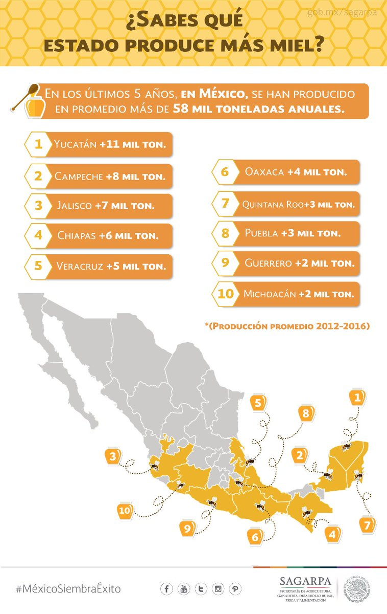 Honey producers states in Mexico