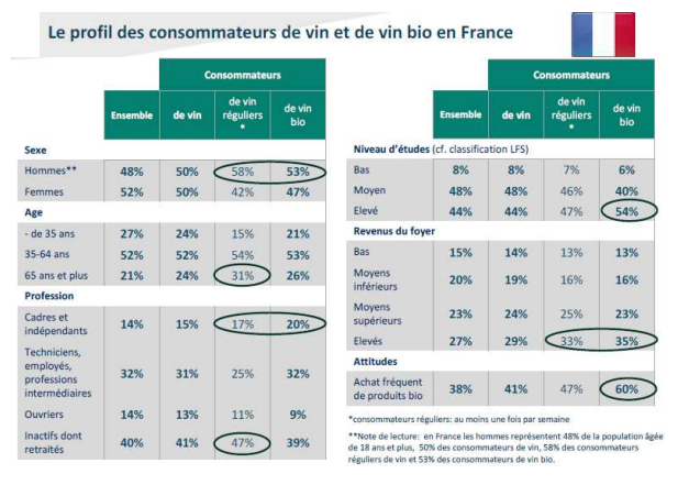 Profile of the type of consumer in France
