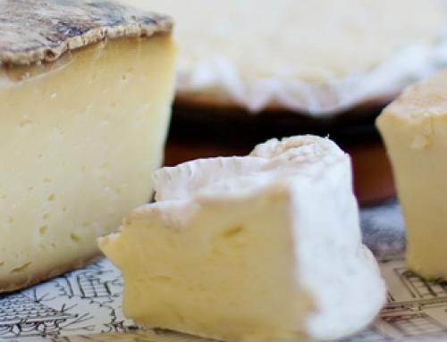 Die Käseindustrie in Spanien